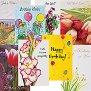 Office & Leisure - All Occasion Card Set - 24 Pack